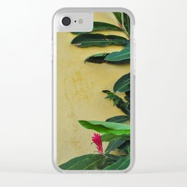 Vibrant Clear iPhone Case