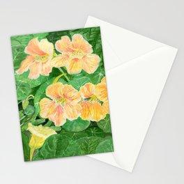 Nasturtium flowers in the garden Stationery Cards