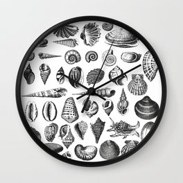 Vintage Sea Shell Drawing Black And White Wall Clock