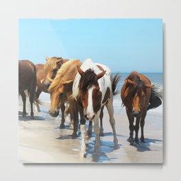 Watercolor Horse 40, Assateague Pony, Assateague, Maryland, Herd Hunters Metal Print