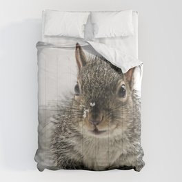 Adorable Praying Squirrel..Feed ME!! Comforters