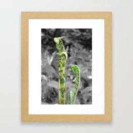 Selectivecolor Sinks Plant Framed Art Print