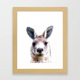 Kangaroo Portrait Framed Art Print
