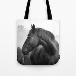 Black & White Horse Photograph ~ Cades Cove Riding Stables Tennessee Tote Bag