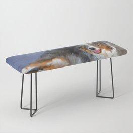 Australian Shepherd Bench