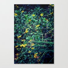 A Flower a Day Keeps the Doctor Away Canvas Print