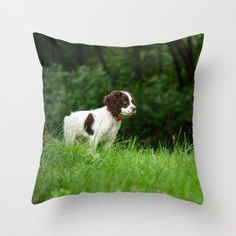 My Theodore ~The English Springer Spaniel~ 2 Throw Pillow