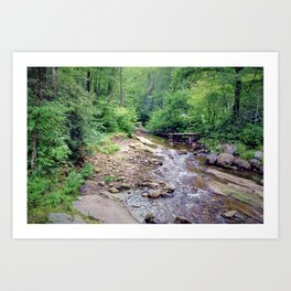 Pisgah National Forest Art Print