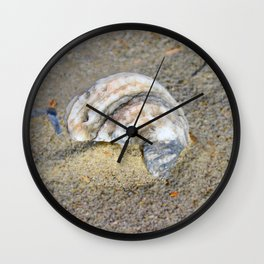Shell in the Sand Wall Clock