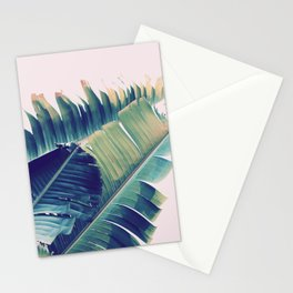 Frayed Stationery Cards