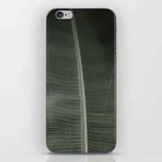 Bananas iPhone & iPod Skin