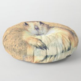 Vintage, Sitting Prairie Dog Floor Pillow