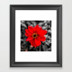 Red and Yellow Framed Art Print