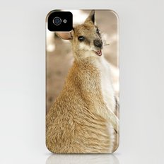 Smiling Kangaroo iPhone (4, 4s) Slim Case