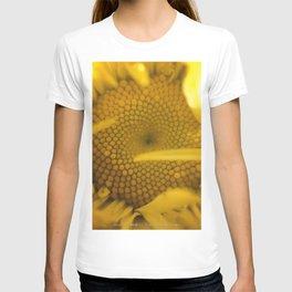 """Leucanthemum, """"Shasta Daisy"""" T-shirt"""