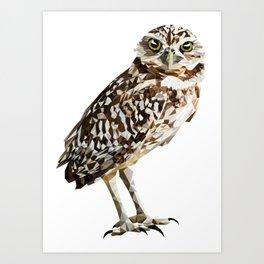 Low Poly  Burrowing Owl Art Print