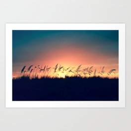 Seagrass Sunset Art Print