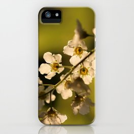 A Golden Green iPhone Case