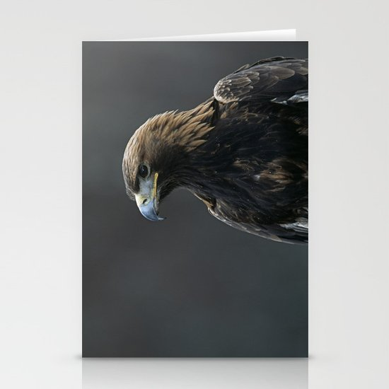 GOLDEN EAGLE PORTRAIT 1 Stationery Cards