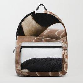 Tucked Backpack