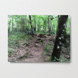 Let Us Take This Path Metal Print