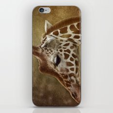 Its all in a Glance iPhone & iPod Skin
