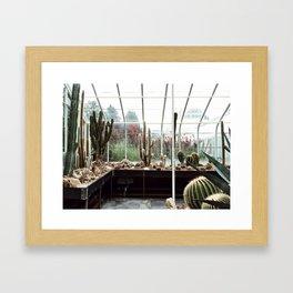 Dreaming of Ansel Adams Framed Art Print