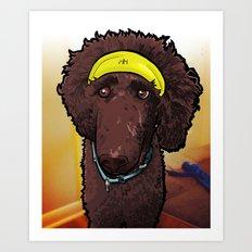 Hobbes (poodle) Art Print