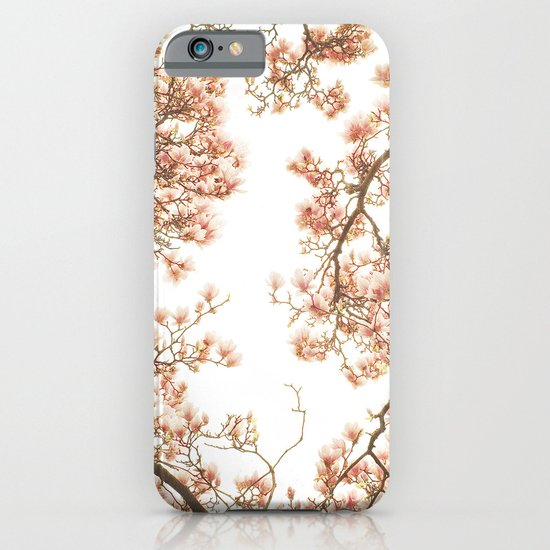 Magnolia Tree Looking Up iPhone & iPod Case