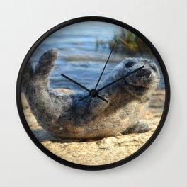 Harbor Seal on the rocky Maine coast Wall Clock