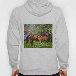 Mother horse with little foal Hoody