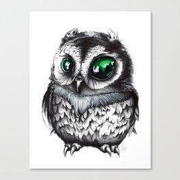 Baby Night Owl Canvas Print