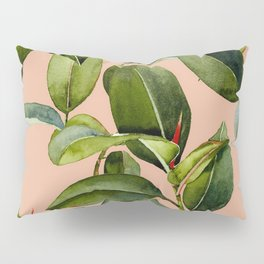 Botanical Collection 01 Pillow Sham
