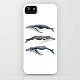 Humpback whales iPhone Case