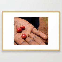Rwandan Coffee Framed Art Print