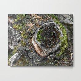 Stump Metal Print