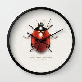 Seven spot ladybird Wall Clock