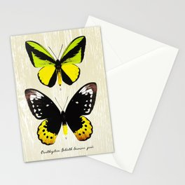 Butterfly07_Ornithoptera goliath samson Stationery Cards