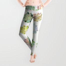 Spring Succulents Leggings