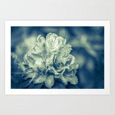 filigree - blue Art Print