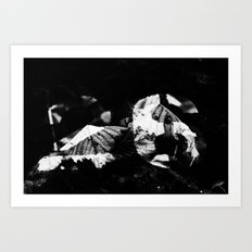 On The 26th Day Art Print