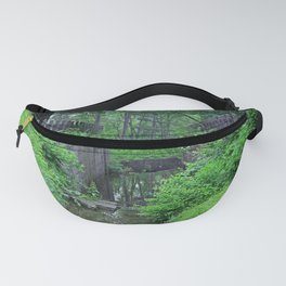 Rites of Spring Fanny Pack