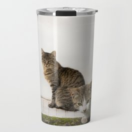 Picture of cats Travel Mug