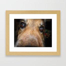Sabre Framed Art Print