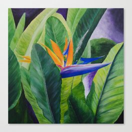 Bird of Paradise Painting by Teresa Thompson Canvas Print