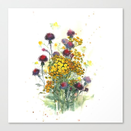 Watercolor wildflowers, aquarelle Canvas Print