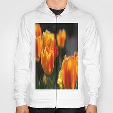 Tulips in the Garden Hoody