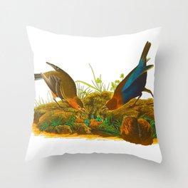 Cowbird Bird Illustration Throw Pillow