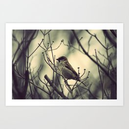 half a bird in the hand is worth... Art Print