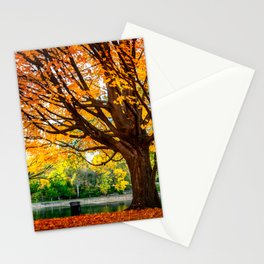 Many colors of fall Stationery Cards
